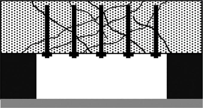 basf-01-678x361