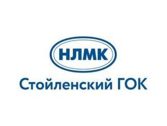 cropped-nlmk-logo-sgok-alt-2
